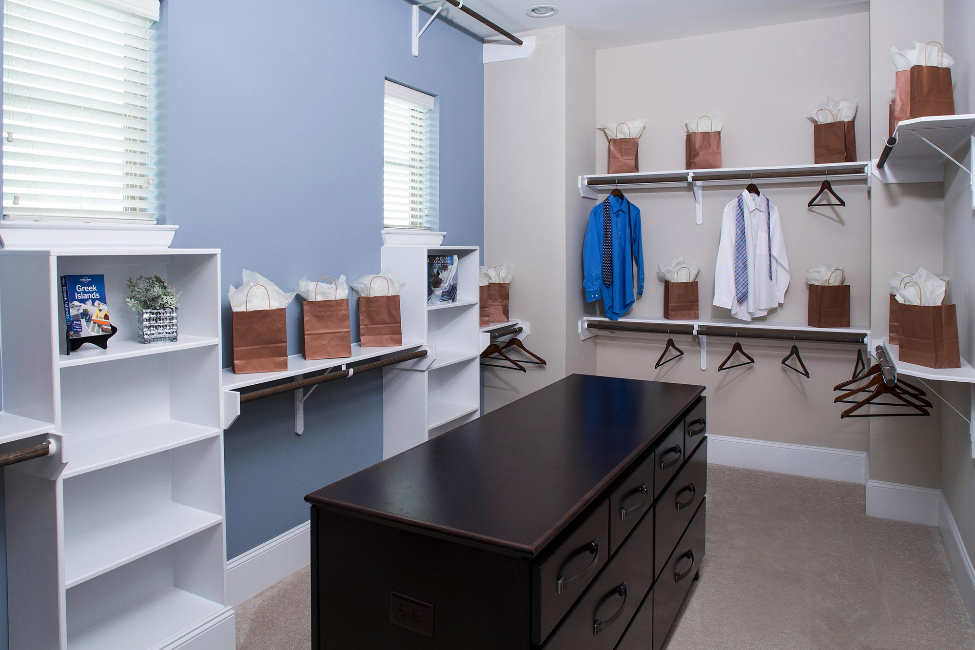 Luxury Closets: Store Your Stuff in Style!