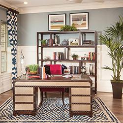 study with bookshelves