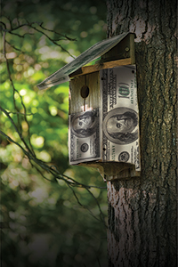 Energy Efficient Why buying green makes sense