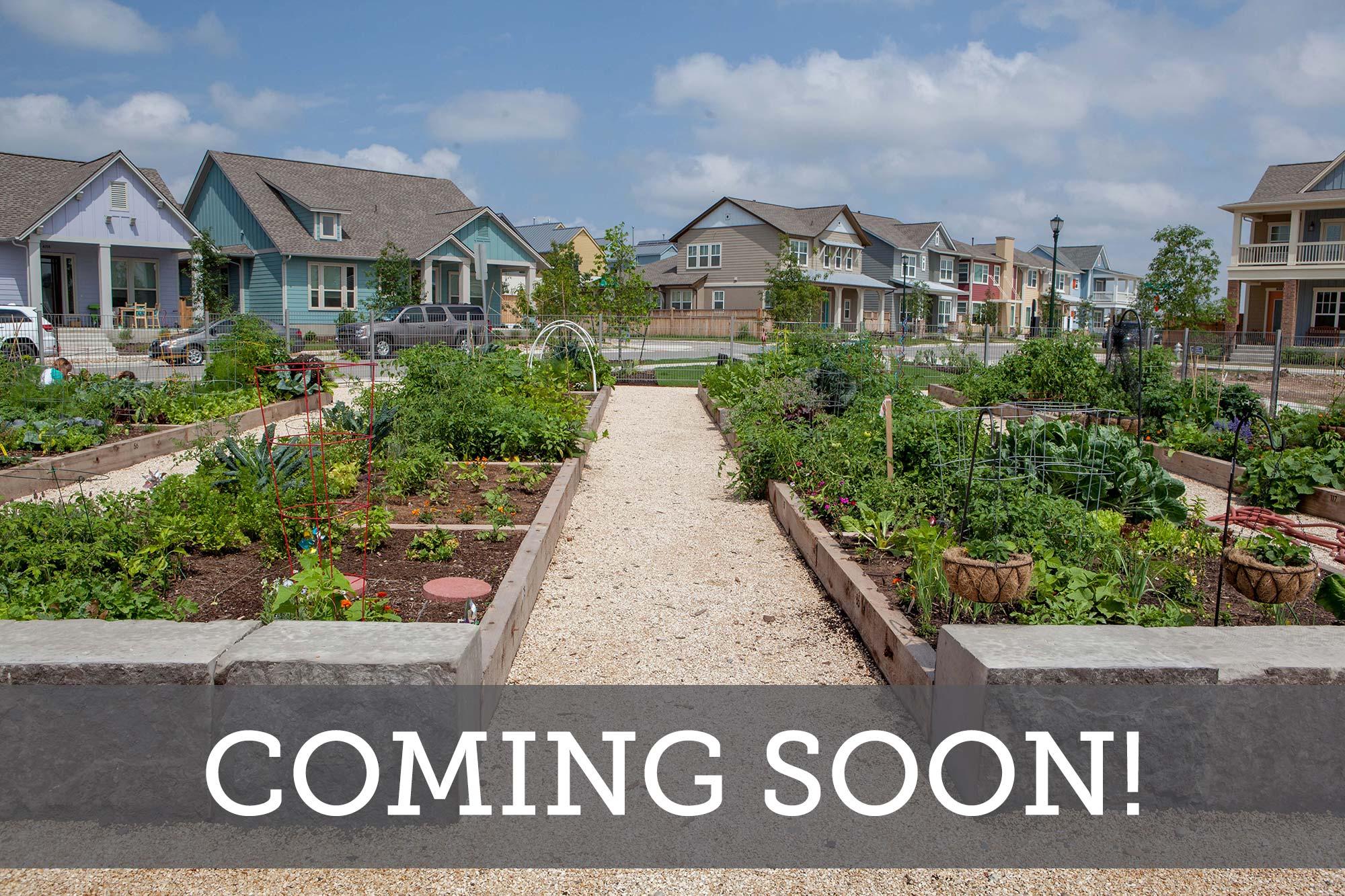 Mueller Yard Homes - Coming Soon
