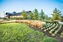 Amenity Center at Jordan Ranch