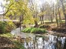 Jackson's Grant on Williams Creek