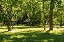 Saxony Parks