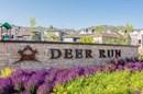 Deer Run Entry Monument