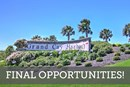 Grand Cay Harbour 60' - Final Opportunities