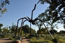 Spider Statue in the Park