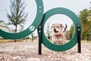 Carnes Crossroads - Dog Park
