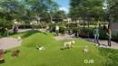 Parkland Square - Dog Park