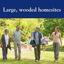 Large Wooded Homesites