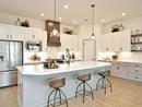 The Ridgegate - Kitchen