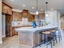 The Wedgestone - Kitchen