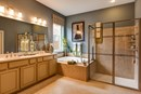 The Delaney - Master Bath
