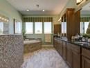 The Saguaro - Owner's Bath