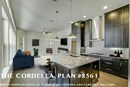 The Cordella - Kitchen