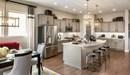 The Cherish - Kitchen